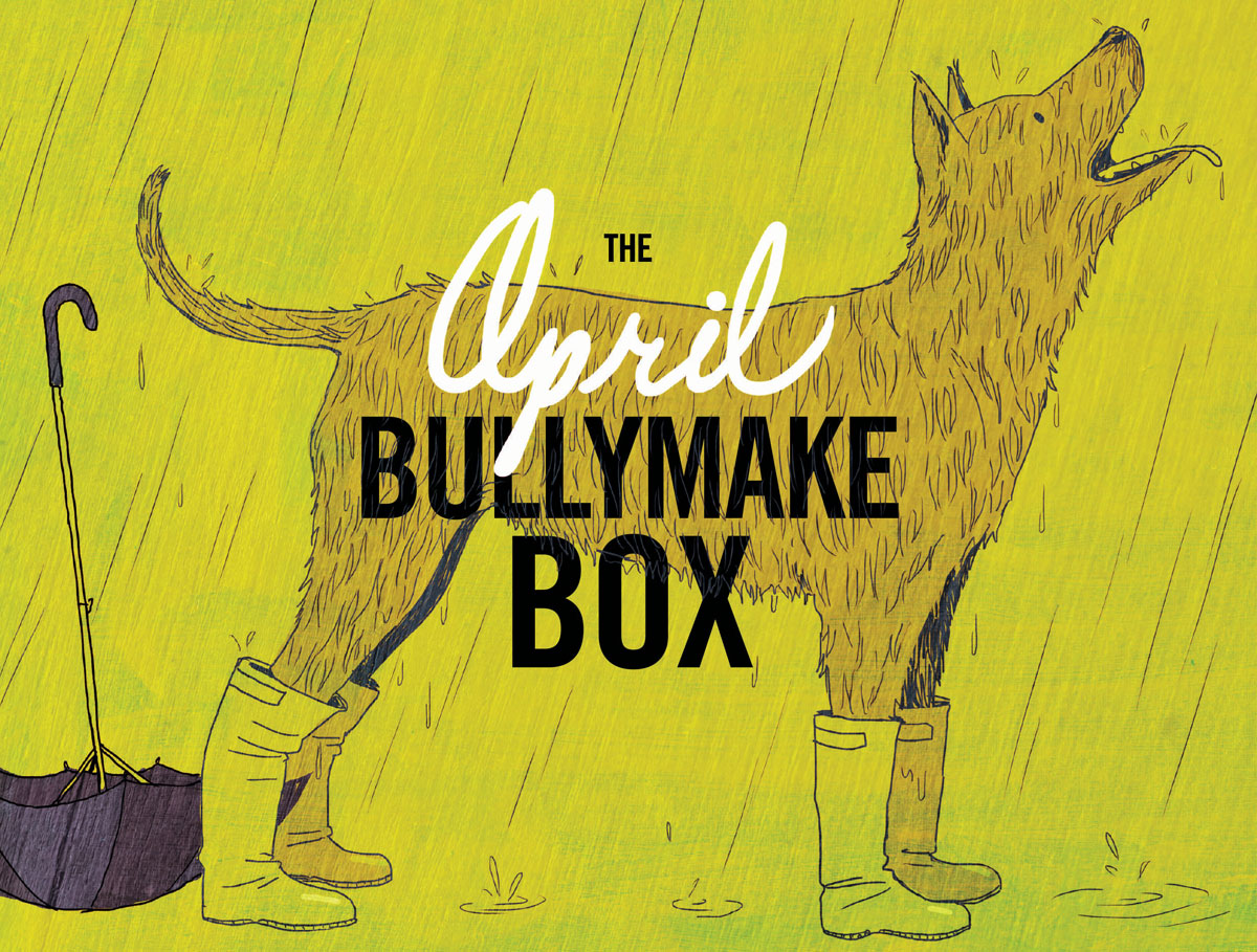 Past Boxes - Bullymake Box - A Dog Subscription Box For