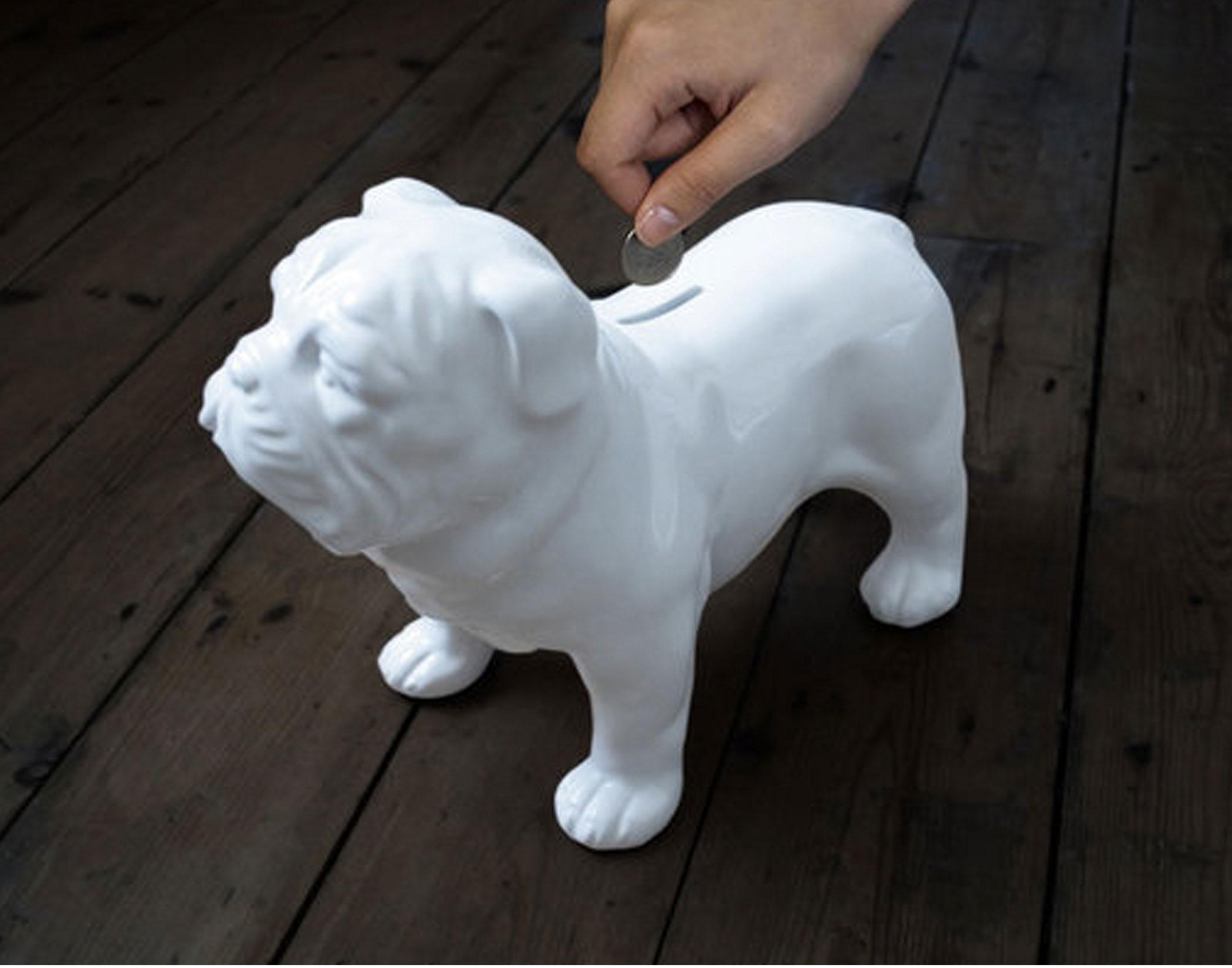 Bullymake Blog - Bullymake Box - A Dog Subscription Box For Power