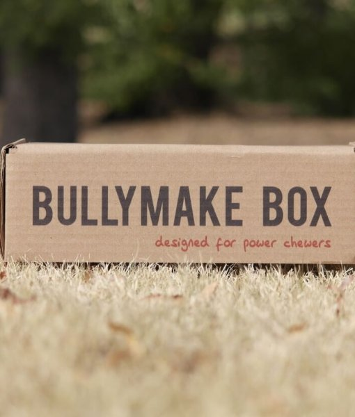 Bullymake Box – 1 Month
