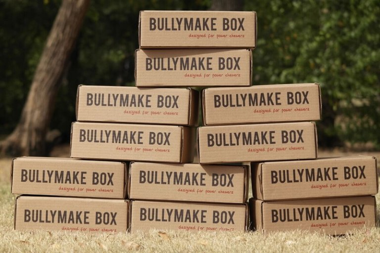 Bullymake Box – 12 Months