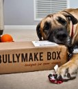 Power Chewers LOVE Bullymake Boxes!