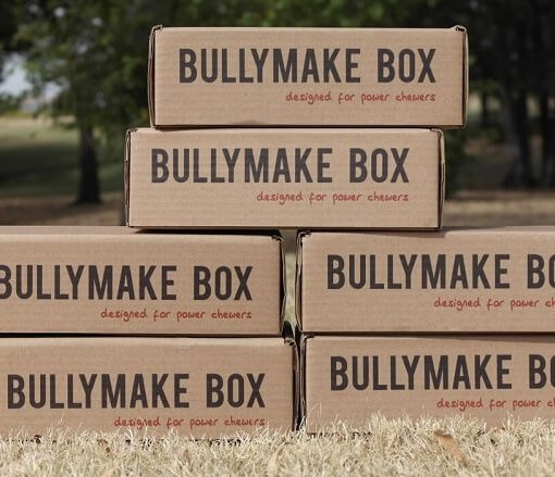 Bullymake Box – 6 Months